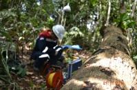 CAMP 26 HAJU PROJECT 3 THIESS INDONESIA MUARA TUHUP MUARA TEWEH KALTENG
